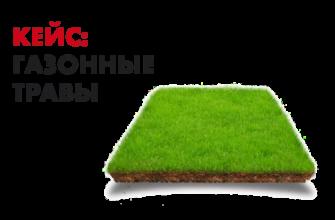 Кейс продвижение семена газонных трав