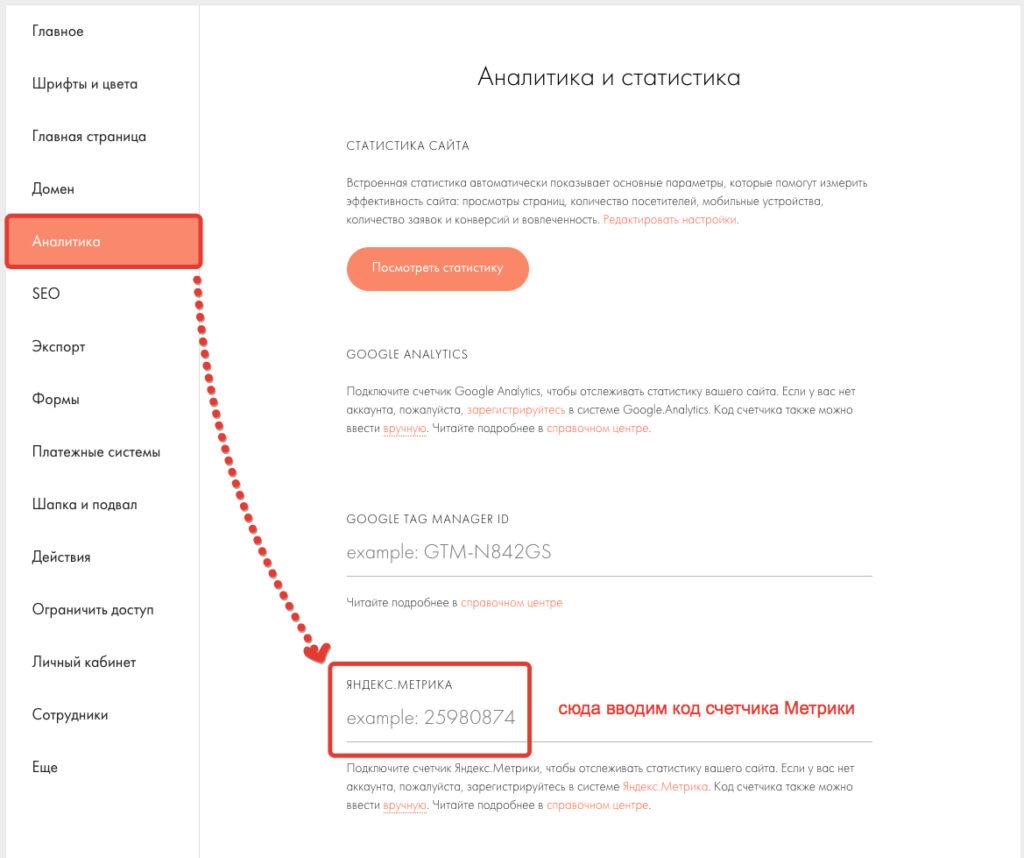 Ввод номера счетчика Яндекс Метрики